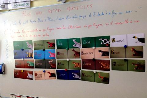 tableau avec les photos du livre d'alice